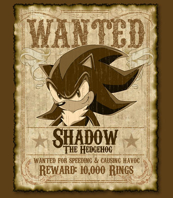 Shadow wanted test for Dreamcast 2 game